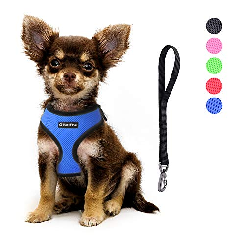 PetiFine Dog Harness with Car Safety Seat Belt, Adjustable Breathable Air Mesh Puppy Vest Harness for X- Small/Small/Medium/Large Dogs & Cats(S, Blue)