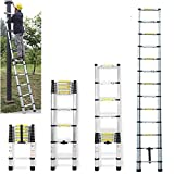 DICN 12.5FT Extendable Ladder Telescopic Folding Compact Light Weight Portable Aluminum Max. 330lb Load...