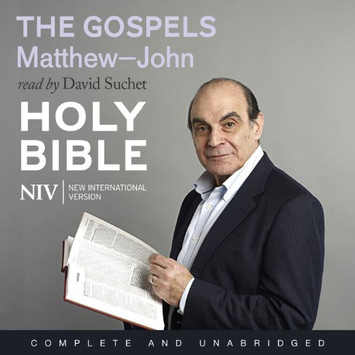 NIV Bible 7: The Gospels cover art