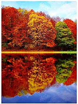 1000 Piece Landscape Maple Jigsaw - Scenery Puzzles Autumn Jigsaw Puzzles 1000 Pieces for Adults Jigsaw Puzzle Comes with a high-Definition Poster