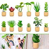 BBTO 12 Pieces Mini Artificial Succulent Plants Refrigerator Magnets for Shelf Kitchen Counter Office Decor Tiny Miniature Desk Plant Decoration (Wall Hanging or Lay Flat)