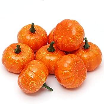 Best small pumpkins Reviews