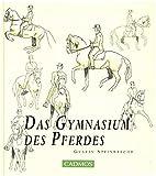 Das Gymnasium des Pferdes - Gustav Steinbrecht