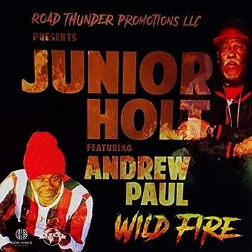 Wild Fire (feat. Andrew Paul)
