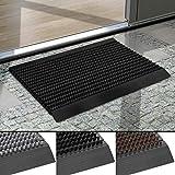 Floordirekt Fußmatte Power Brush - Testurteil Sehr Gut- Schmutzfangmatte mit Alu Rahmen für außen und innen - viele Farben & Größen (Schwarz, 40 x 60 cm)