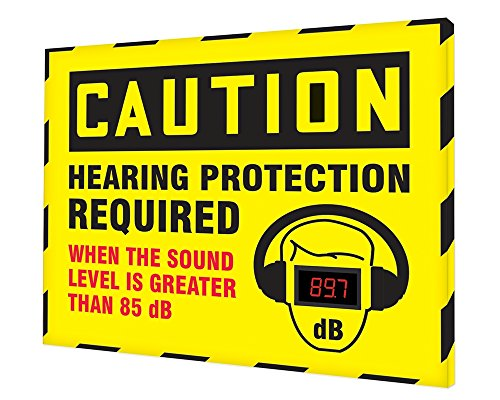 Accuform SCS602 Decibel Meter Sign, 30 x 36 inches