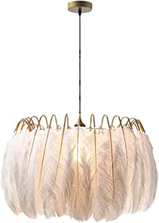 Pointhx Colgantes Luz Cuerpo de lámpara de Pluma Lámpara de Techo Decoración nórdica Colgantes Luz de Longitud Ajustable Arte de Hierro Lámparas de araña para la Sala de Estar Dormitorio