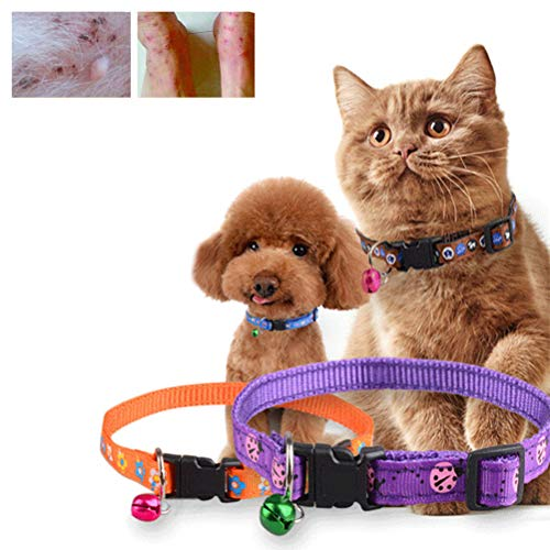 Kampre Pet Cat Leash Flohhalsband Verstellbares Cat Collar Entwurmungsfloh Quick Release Cat Ring