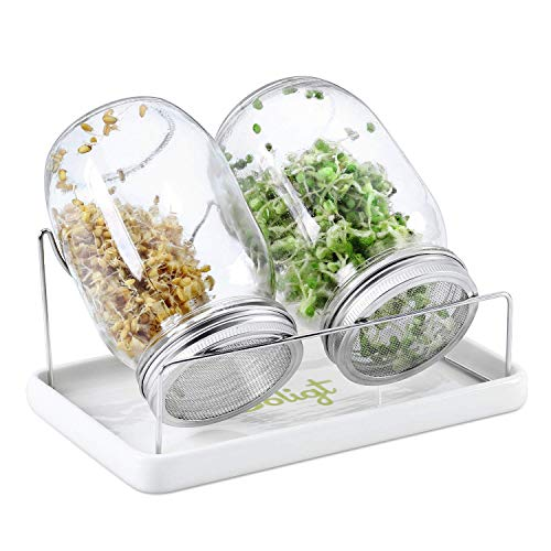 Complete Mason Jar Sprouting Kit - 2 Wide Mouth Quart Sprouting Jars with 316 Stainless Steel Sprouting Lids, Drip Tray and Stand