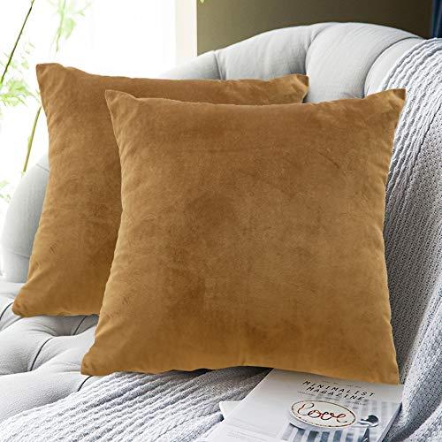 FRECINQ Fundas Cojines 45x45cm Cojines Sofa 2 Piezas Velvet Suave Funda de Almohada para el Sofa Sillas Jardín Decoración Coche Sala de Estar(marrón oscuro)