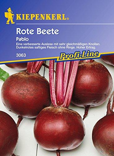 Sperli 3063 Gemüsesamen Rote Beete Pablo, grün