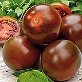 Kiepenkerl Schokoladen-Tomaten 'Sacher F1'