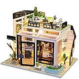 DRAKE18 Maison de poupée Miniature Bricolage avec des Meubles en Bois Magasin de Musique Kits de Jouets Kits Enfants Cadeaux d'anniversaire (échelle 1:24)