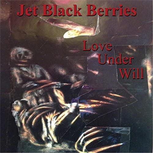 Jet Black Berries