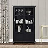 Ameriwood Home Aaron Lane Bookcase with Sliding Glass Doors, Black