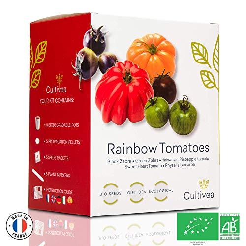 Cultivea Rainbow Tomatoes – Bio Tomaten Anzuchtset -100% Öko Samen – Indoor Garten – Das perfekte Geschenk – Gemüse Set (Green & Black Zebra, Sweet Heart, Haiwaiian Pineappel, Physalis) – DIY –