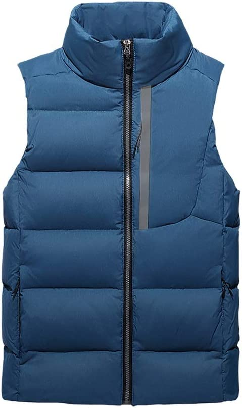 Mens Winter Vest Outerwear Windproof Sleeveless Jacket Lightweight Down Vest Stand Collar Down Vest (Color : Blue, Size : Large)