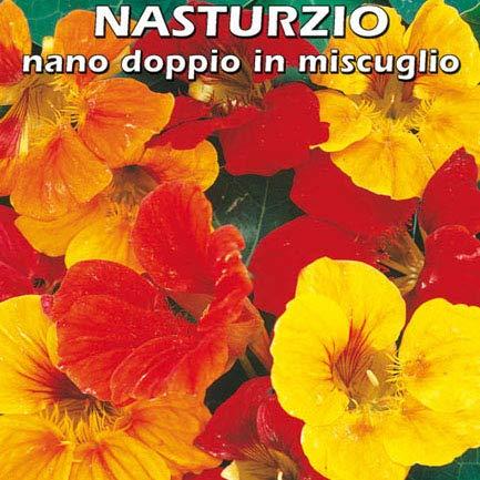 NASTURZIO NANO DOPPIO IN MISCUGLIO (Tropaeolum manus) - SEMI