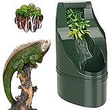 WEIJ Reptile Eau Distributeur - Serpent, Gecko, Caméléon, Tortue, Barbu Dragon en Buvant Eau Goutteur Bol pour Ton Pet Reptiles - Fontaine Eau Assiette