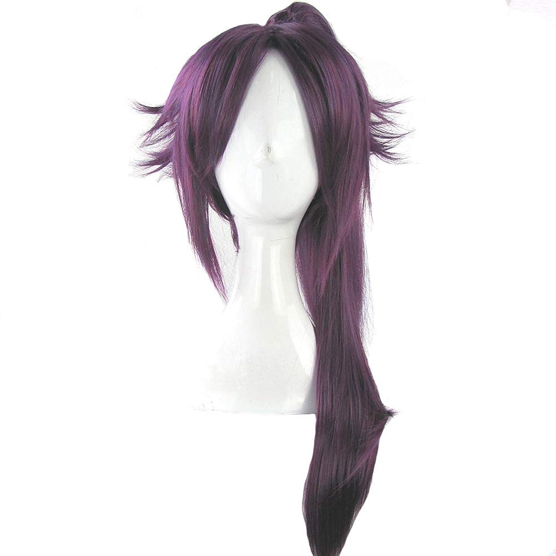 かつら - ファッション長いストレート高温シルクウィッグ自然な柔らかなパーソナリティポニーテールフリー形状ハロウィーンボールの役割を果たす70cmの紫色に適して (色 : Purple, サイズ さいず : 70cm)