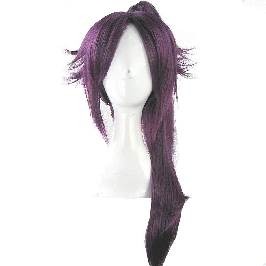 芸術下る連続したかつら - ファッション長いストレート高温シルクウィッグ自然な柔らかなパーソナリティポニーテールフリー形状ハロウィーンボールの役割を果たす70cmの紫色に適して (色 : Purple, サイズ さいず : 70cm)