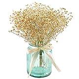 Outgeek 1 Botte Fleur Séchée Gypsophila Home Decor Fleur Préservée Babysbreath Accessoire De Photographie