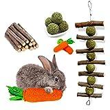 OVERTANG Rabbit Chew Toys, Improve Dental Health, No...