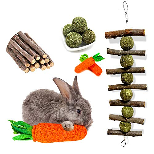 OVERTANG Rabbit Chew Toys, Improve Dental Health, No Glue, 100% Natural Materials by Handmade. Loofa Carrot Toys, Licorice Balls and Apple Sticks Toys. for Rabbits, Chinchillas, Guinea Pigs, Hamsters