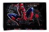 Marvel Spider-Man - Geldbörse Geldbeutel Portemonnaie - Spiderman (schwarz)