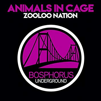 Zooloo Nation