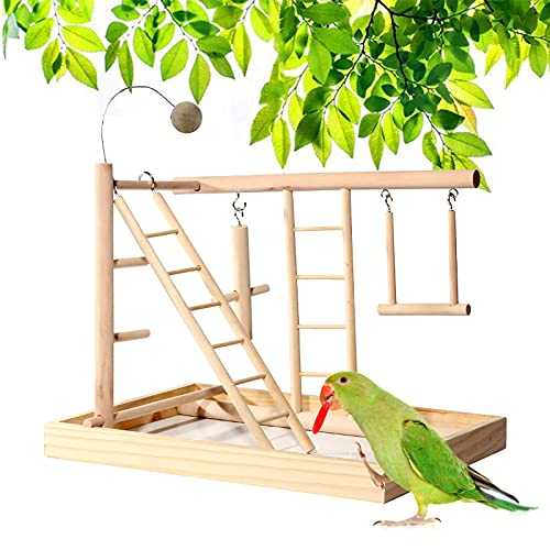 Holzsammlung Percha para Loros de Madera, Portátil Aves Juego Stand Parque Infantil Gimnasio Juego Juguetes Ejercicio Plataforma de Formación Corralito para Pájaros Trepador para Pequeños Periquitos