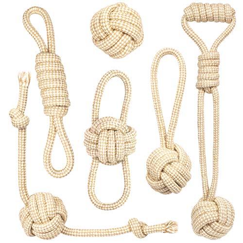 PIVEDOS Hundespielzeug – Das Original aus natürlicher Baumwolle für kleine und große Hunde – Für Welpenerziehung – Hundebälle – 6er Set