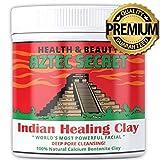Aztec Secret Healing Clay, Reinigende Naturkosmetik Vulkanerde gegen Pickel und fettige Haut, Porentiefe Reinigung, 100% Natürlich, neues Hautgefühl in 3 Tagen