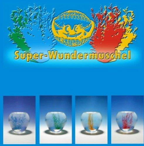 Wundermuschel farblich sortiert, 25 Stück