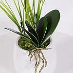 vivilinen decorative phalaenopsis artificial flowers arrangement orchid plants bonsai home office party decoration with vase (one size, pink)