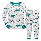 JinBei Pijama Dinosaurio Pijamas para Niño Conjunto Verde Largo Algodon Primavera Manga Larga Camiseta Gris 2 Piezas Pantalones Pajamas Invierno Ropa de Dibujos Animados Otoño Edad 6-7 Anos