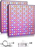 Yasbed Lampe de croissance LED 75 W pour plantes d'intérieur avec spectre complet pour semis, hydroponique, serre, plantes succulentes, fleurs-2 pièces