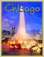 ERZANメタルポスター壁画ショップ看板ショップ看板シカゴイリノイバッキンガム噴水アメリカ合衆国旅行広告インテリア 看板20x30cm