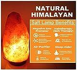 Himalayan Salt Lamps - Best Reviews Guide