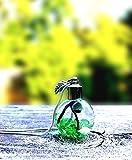 Live Marimo Moss Ball Terrarium Necklace Hand Made Live Green Jewelry - Green Jade