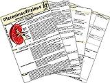 Niereninsuffizienz - Medizinische Taschen-Karte - Hawelka Hawelka Verlag