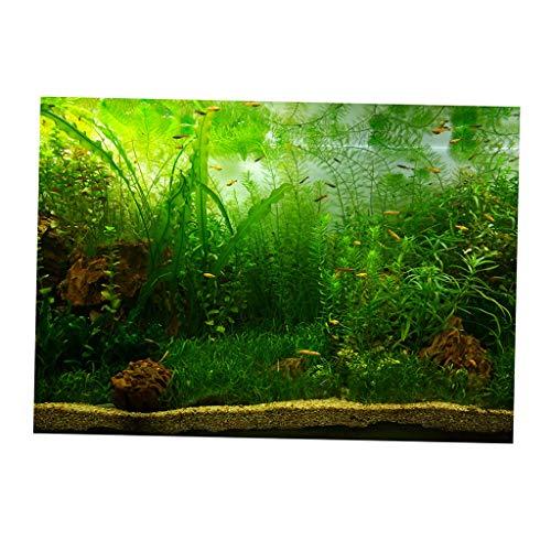 perfk Aquarium Hintergrund selbstklebend Rückwand Poster - Wasserpflanzen, 61x30cm