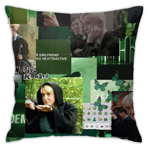 Dr-aco-M-al-foy Throw Pillow Funny Pillowcase Draco-Malfoy Funny Gag Gifts Xmas Birthday Gift 445 * 45 (Colour1)