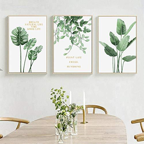 DTKY Cuadro en Lienzo Cuadros lienzos Impresión sobre Lienzo 3 Partes Art la Pintura Pinturas Fotos Hoja Verde Decoracion de Pared, 50x70cm(sin Marco)
