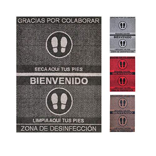 Alfombra desinfectante Calzado - Felpudo Limpia Zapatos para la Entrada, moqueta higienizante (Negro, 58_x_75_cm)