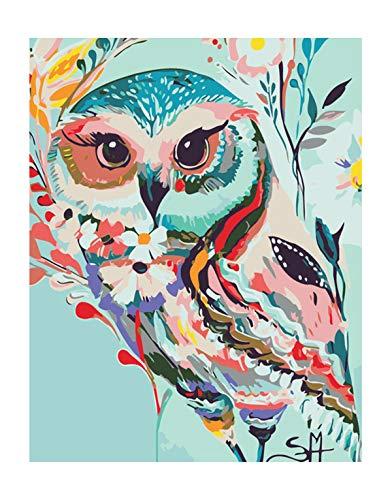 Pintar por números para Adultos Animales Búho - Lienzos para Pintar por números con Pinceles y Colores Brillantes - Cuadro de Pinturas con numeros sobre Lienzo Dibujado Adultos y niños