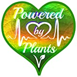 Vegan Power Plant Heart Shaped Sticker - Holographic Leaf Powered by Plants Vinyl Decal 3 X 3 Inch for Car Bumper Window Water Bottle Vote Joe Biden Kamala Harris Vice-President + Better Than Magnet