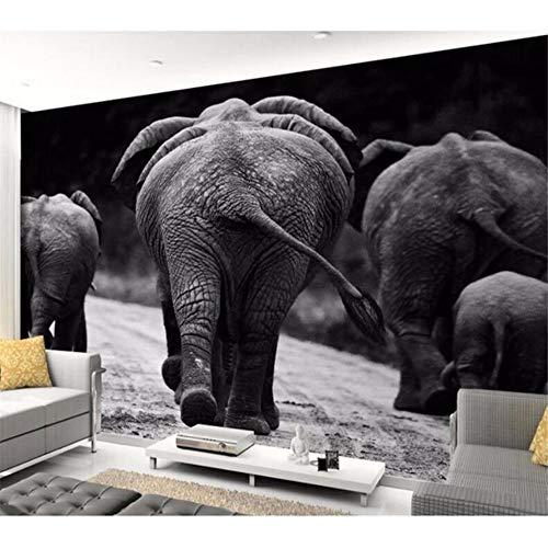 Wuyii Murales 3D-fotodruk in wit en zwart fotografie van olifanten Afrikaanse fotografie Di Tv achtergrond 3D 400 x 280 cm