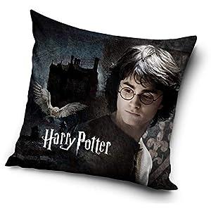 Funda de cojín de Harry Potter, 40 x 40 cm (Harry) 16