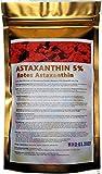 Polvo de astaxantina Haematococcus Pluvialis 5% bolsa de 50 g [máxima calidad, envasado al vacío, protegido contra la luz, protegido contra la oxidación] (50 g)